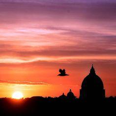 Dagli archivi dell'@agenzia_ansa , tramonto su #Roma del 30 Novembre  2015 #sunset #Rome #weather #love #life #love #bestpictures Guarda su ANSA.IT le grandi foto dal mondo