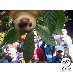 小心!旅行拍照動物會搶鏡! - Yahoo!旅遊