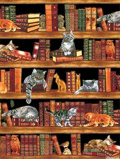 "Cats in the Library - Black - 24"" x 44"" PANEL"