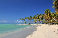 Punta El Rey at the Costa Esmeralda ..... Caribbean Dream of a beach on the northern coast of the Dominican Republic