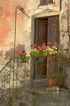 crumbling wall and fresh geraniums.