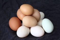 President of egg board forced to retire due to foul play with vegan food company, Hampton Creek Foods!