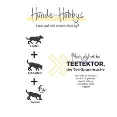Teetektor 🥳 Der Kurs ist da, es geht los. __________________________ #hundehobby #schnüffelnmagich #teetektor Lisa, Instagram, Home Decor, Hobbies, Pet Dogs, Decoration Home, Room Decor, Home Interior Design, Home Decoration