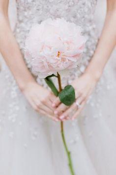 Choosing Your Bouquet - alternative bouquet ideas | Pinterest ...