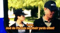 Do Marines sell their yards often? - Zivism // NCIS