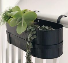 Contemporary balcony box in the bau style ideal for small spaces. Great for indoor gardening.