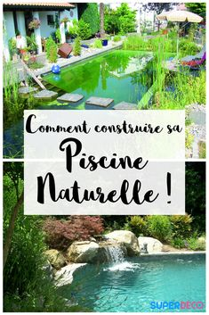 Comment construire sa piscine naturelle ! Vous avez toujours voulu avoir un bassin naturel chez vous ? Un étang de nage ? Notre article vous dit tout sur la construction d'une piscine naturelle chez vous.