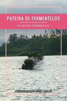 Pateira de Fermentelos - A lagoa tranquila - The quiet lagoon viajarporquesim.blogs.sapo.pt