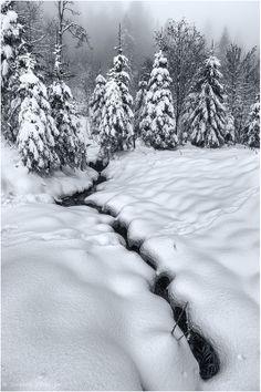 Вода расширяется при замерзании в отличие от других веществ, которые уменьшают свой объем при понижении температуры. Это также является необычным свойством воды.