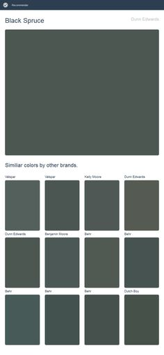 Black Spruce, Dunn Edwards. Click the image to see similiar colors by other brands.