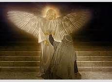 angel Gabriel, Angels, Bird, Pets, Image, Archangel Gabriel, Angel, Birds, Animals And Pets