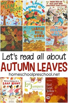 Come discover some of our very favorite picture books about leaves for preschool. Fiction and nonfiction books for beginning readers! #homeschoolprek #leafbooks #booksaboutleaves #autumnbooks
