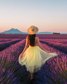 Travel guide about Provence, in France during the lavender season (June/July). You'll get all the tips to enjoy your stay near Valensole.