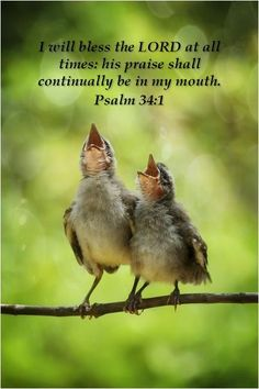 i will praise you and with my mouth i will sing songs of praise - Google Search