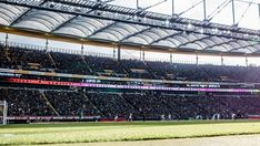 All info, news and stats relating to Eintracht Frankfurt in the Bundesliga season Louvre, Soccer, Building, Sports, Travel, Hs Sports, Football, Viajes, European Football