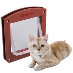 Dog cat Flap Door ** Find out more details by clicking the image : Furnitures that cats love