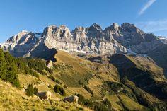 Le Site, Midi, Half Dome, Mount Everest, Mountains, Nature, Travel, Image, Alps