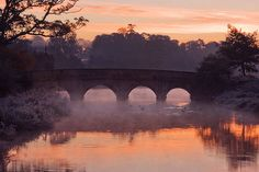 Stone bridge over the River Rye at Carton House, Maynooth. Over The River, Rye, Wonderful Images, Nature Photos, Fine Art America, Dawn, Ireland, Nature Photography, Bridge