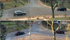 Toronto neighbours use leaves and chalk to stage rogue rejig of problem intersection