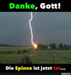 Danke, Gott! Die Spinne ist jetzt tot.. Funny Thank You, Thank You God, Memes Humor, Funny Picture Jokes, Funny Pictures, Direct Me, Daily Challenges, Warrior Cats, Super Funny