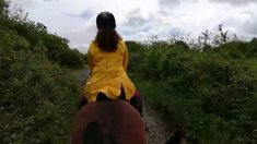We took the three trainees out into the big bad world, and rode them down our trekking . Horse Training, Chester, Jasmine, Horses, Horse