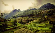Photo Terraces in Vietnam by Réhahn Photography on 500px