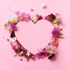 Creative Layout With Pink Flowers, Paper Heart Over Punchy Pastel Background. Cutted Heart In Punchy Pastel Paper Background. Framed Wallpaper, Flower Background Wallpaper, Pastel Background, Pink Wallpaper Iphone, Heart Wallpaper, Flower Backgrounds, Flower Frame, Flower Art, Cactus Flower