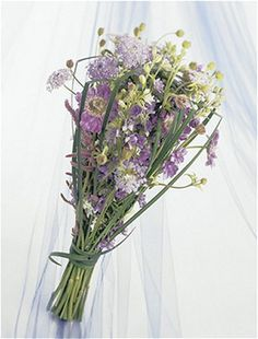 #pale lavender phlox and blue roses surround hybrid blue delphinium bridal bouquet ... Wedding ideas for brides, grooms, parents & planners ... https://itunes.apple.com/us/app/the-gold-wedding-planner/id498112599?ls=1=8 … plus how to organise an entire wedding ♥ The Gold Wedding Planner iPhone App ♥ http://pinterest.com/groomsandbrides/boards/