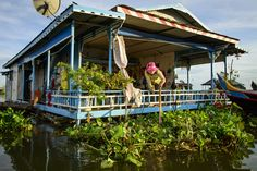 A woman arranging her garden in the floating village of Kampong Chhnang, Cambodia.