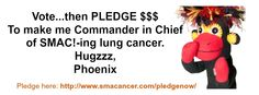 SMAC! monkey Phoenix has an important message.   Here's the link to pledge: http://www.smacancer.com/pledgenow/  Pass the SMAC! Let's do this!