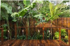 balinese garden ideas