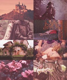"""Disney Princess Aesthetic: Sleeping Beauty """" """"The princess shall indeed grow in grace and beauty, beloved by all who know her. Princess Aesthetic, Disney Aesthetic, Witch Aesthetic, Aesthetic Collage, Les Winx, Briar Rose, Story Inspiration, Disney Love, Faeries"""