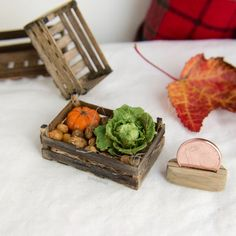 Angie Scarr Half of a Green Cabbage 1:12 Artisan Dollhouse Miniature Food
