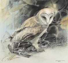 Paul Christiaan Bos Owlery: Observatie 9 (Oermoeder) potlood, pastel, kleurpotlood en zilverstift op Fabriano