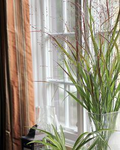 Chic Flower Arrangements: Switch Grass - VRAI Magazine