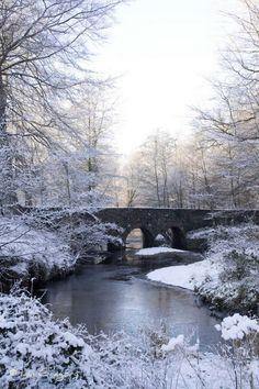"""Winter wonderland"""""""