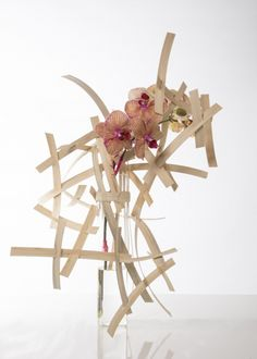 Phalaenopsis design How to make good use of one precious single cut Phalaenopsis stem. Nelleke Bontje created no less than four designs with one single stem of 'Golden Treasure'. Want to see how she creates this design, go to the video tutorial!