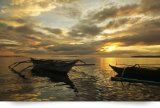 Most recent Donsol Boat Information - http://philippinesmegatravel.com/most-recent-donsol-boat-information/