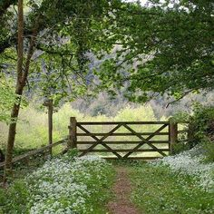 Country Gate-open it up and remember a special place in time where young girls spent summers not worrying about much except for who is coming down the road to visit....(cherished memories in Tennessee)