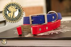 dogIDs ScruffTag Collar: Waterproof, Tough & Stylish. The Labrador of Dog Collars   It's a Lab Thing