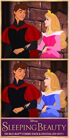 Princess Aurora - Pink or Blue? <<< Pink, because Cinderella was blue and Aurora looks better in pink.