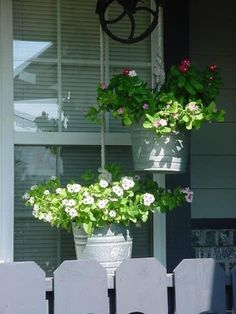 galvanized bucket hanging planters by roslyn