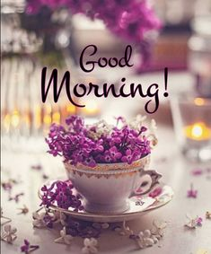 Good Morning, Tea Cups, Place Cards, Place Card Holders, Tableware, Pictures, Hapy Day, Buen Dia, Photos