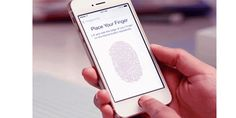 PayPal Considers Touch ID for Mobile Payments With Apple in iOS 8 extending Touch ID functionality to third parties, Business Insider reports that PayPal is already exploring the possibility of having users authorize payments via their own fingerprint instead of with a Retail Solutions, Ios 8, Exploring, Third, Parties, Apple, Touch, Iphone, Digital