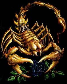Scorpio Photo: This Photo was uploaded by BloodBass. Find other Scorpio pictures and photos or upload your own with Photobucket free image and video hos. Scorpio Zodiac Tattoos, Scorpio Art, Zodiac Signs Scorpio, Zodiac Art, Scorpio Quotes, Arte Cholo, Love Symbol Tattoos, Robot Animal, Alchemy Art