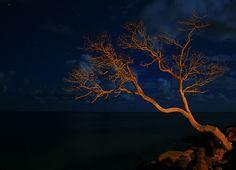 Oahu At Night by kstrebor