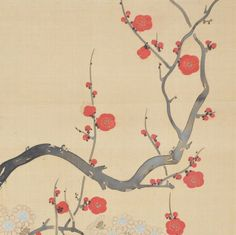 Suzuki Kiitsu (1796-1858) - Rinpa mandarin ducks & plum