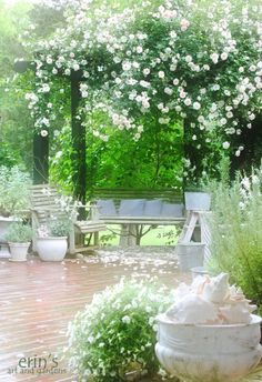 erin's art and gardens: my home