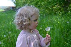 make a wish via finurlig Cringe Channel, Martha Jones, In Remembrance Of Me, Home Remedies For Skin, Dandelion Wish, Purple Garden, Summer Is Coming, Hello Summer, Make A Wish