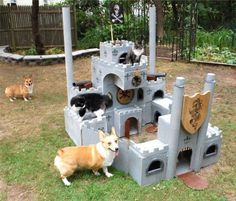 bunnyfood:  Cat Fort vs. Invading Corgis